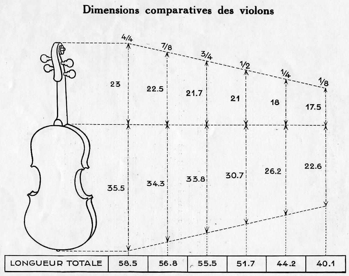 Dimensions comparatives des violons