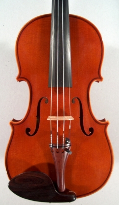 Face of violin Roland Terrier
